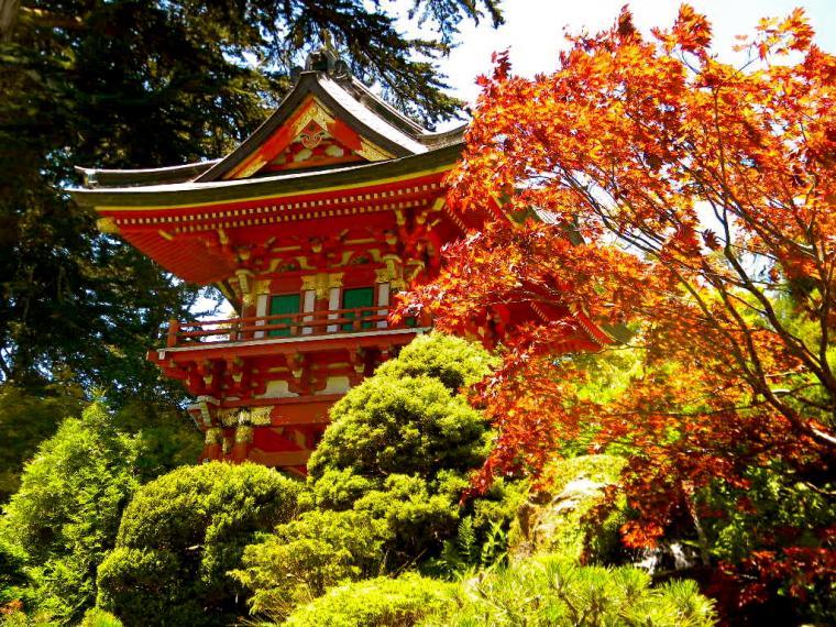 japanese tea garden autunno san francisco
