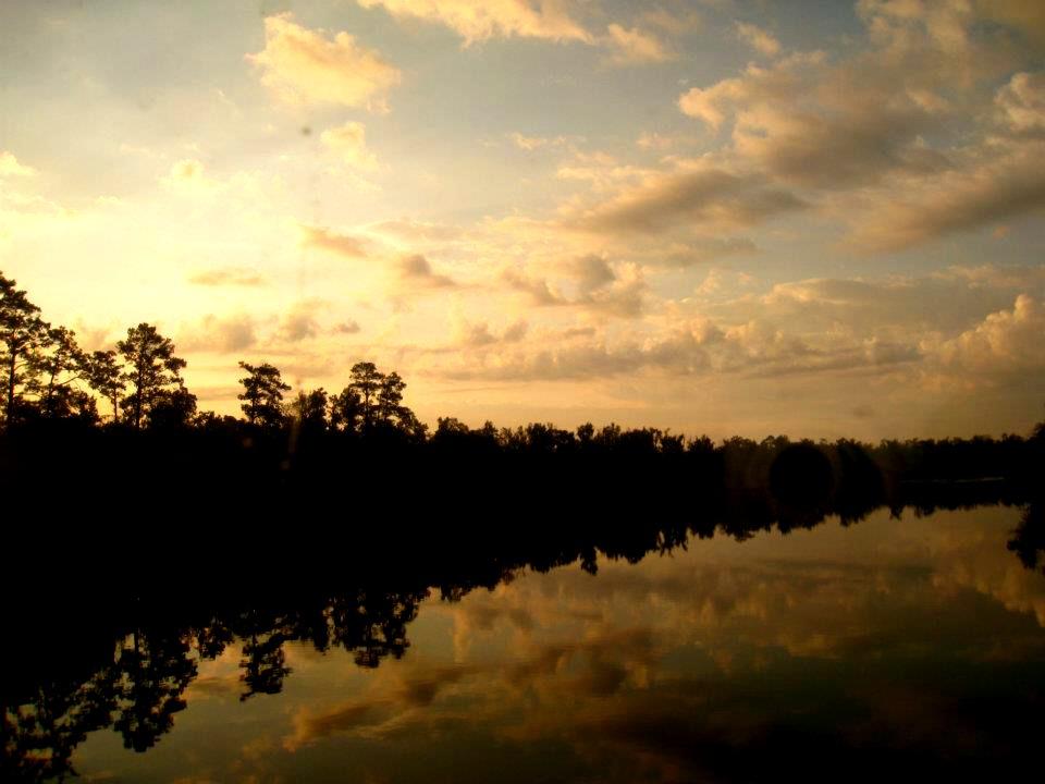 Georgia sunrise train